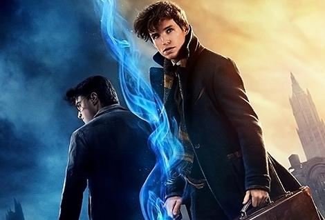 10 liens que l'on peut faire entre les Animaux Fantastiques et Harry Potter