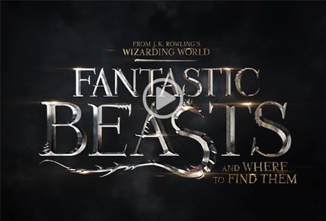 Nouveau trailer des Animaux Fantastiques