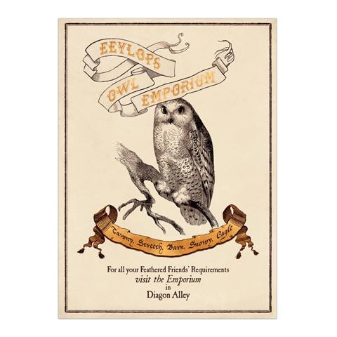 Poster - Eeylops Owl Emporium