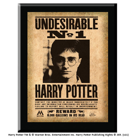 Plaque Undesirable N°1 Harry Potter
