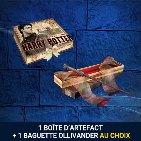 Pack boite d'artefact + baguette Ollivander