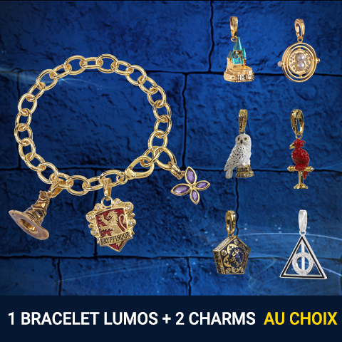 Pack bracelet charms + 2 charms