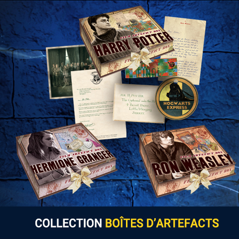 Collection Boites d'Artefacts