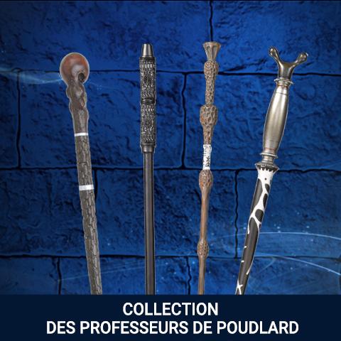 Collection Professeurs de Poudlard
