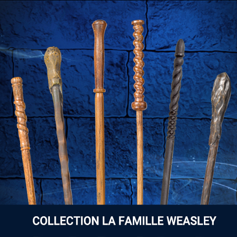 Collection Famille Weasley